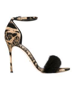 Sergio Rossi   Printed Sandals