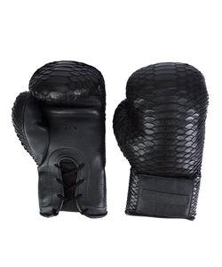 Elisabeth Weinstock | Manila Box Gloves