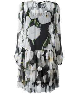 Dolce & Gabbana | Tulip Print Sheer Dress