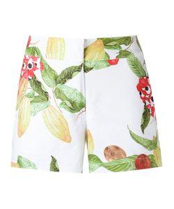 Isolda | Printed Shorts