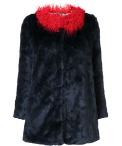 SHRIMPS | Pepe Coat