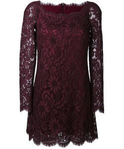 Dolce & Gabbana | Lace Mini Dress