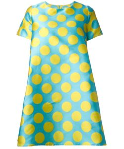 Ultràchic | Pois Print Flared Dress Size 40