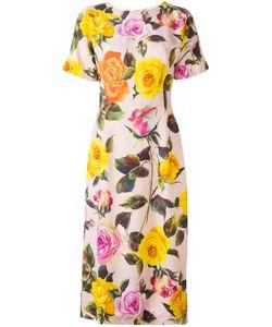 Dolce & Gabbana | Cady Dress 44 Viscose/Silk/Spandex/Elastane