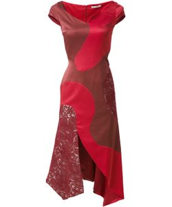 MARTHA MEDEIROS | Panelled Midi Heli Dress