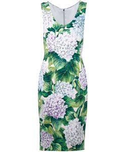 Dolce & Gabbana | Платье С Принтом Гортензий