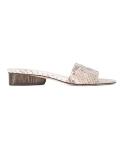 Paul Andrew   Lina Mules 39 Calf Suede/Python Skin/Goat