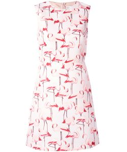 Red Valentino | Flamingo Sleeveless Shift Dress