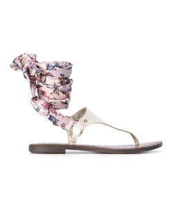 Sam Edelman | Giliana Sandals