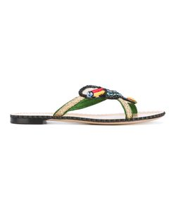 Charlotte Olympia | Parrot Embellished Sandals