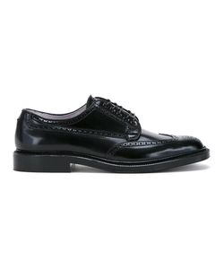 Alden | Classic Brogues 6 Leather