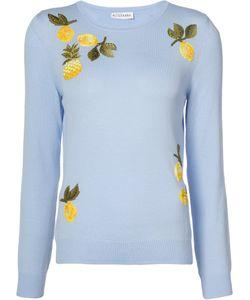 Altuzarra | Pineapple Embroidered Sweater Size Xs