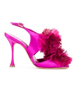 Manolo Blahnik | Flore Pumps