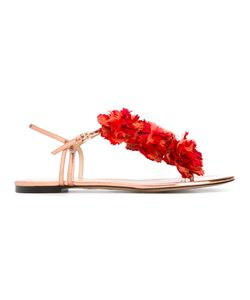 Charlotte Olympia | Flower Embellished Flat Sandals