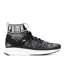 Puma | Кроссовки Ignite Evoknit