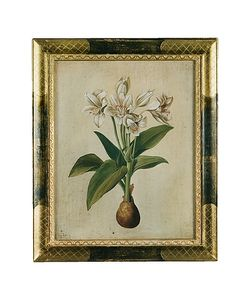 Bianchi Arte | Oil On Canvas Botanical Painting