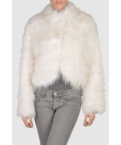 Volpi | Меховая Куртка