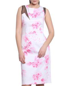 Moda Di Chiara   Dress