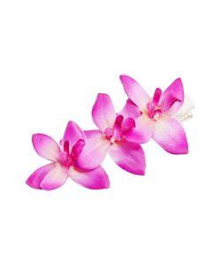 Tropical Flower | Зажим