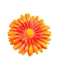 Tropical Flower | Зажим-Брошь