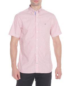 Tommy Hilfiger   Рубашка