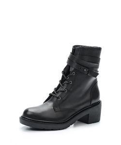 Shellys London | Ботинки