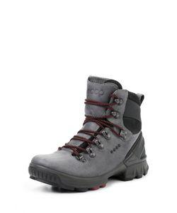 Ecco | Ботинки Biom Hike