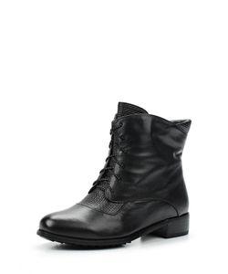 Ascalini | Ботинки