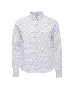 Deblasio   Рубашка