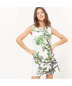 Molly Bracken | Платье Прямое Без Рукавов С Рисунком Листья