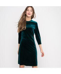 R édition | Платье Велюровое