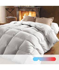 BEST | Одеяло 370 Г/М² 50 Пуха Обработка Против Клещей И Пятен
