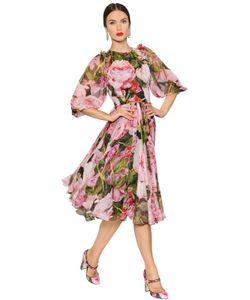 Dolce & Gabbana | Платье Из Шёлкового Шифона С Принтом Розы