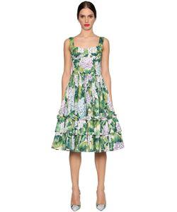 Dolce & Gabbana | Платье Из Поплин С Принтом Гортензия