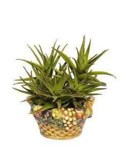 CERAMICHE PUGI | Fruit Basket Ceramic Vase