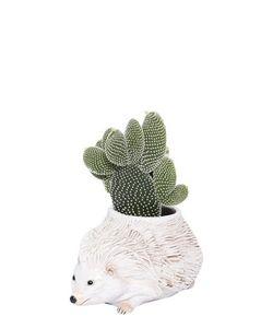 CERAMICHE PUGI | Hedgehog Ceramic Vase
