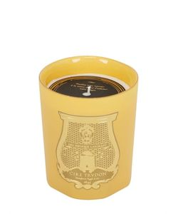 Cire Trudon | Cyrnos Scented Candle