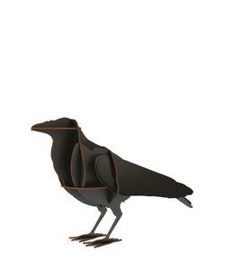 Ibride | Edgar The Raven