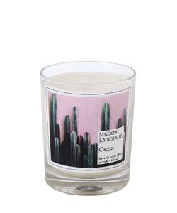 MAISON LA BOUGIE | Cactus Scented Candle