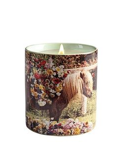 SELETTI WEARS TOILET PAPER | Pony Scented Candle