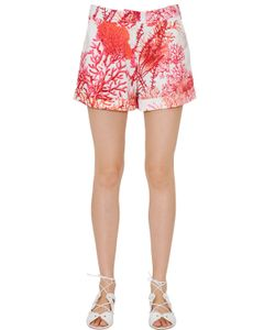 Blugirl | Coral Printed Cotton Satin Shorts
