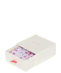 Cheek Frills | Flamingo Modal Bralette Briefs Set