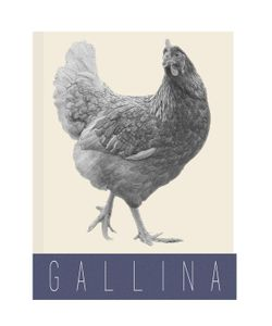 COSIMO VARDARO | Gallina Poster