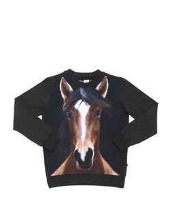 Molo | Horse Print Cotton Jersey T-Shirt