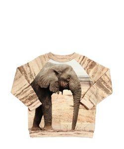 Popupshop   Elephant Printed Cotton Sweatshirt