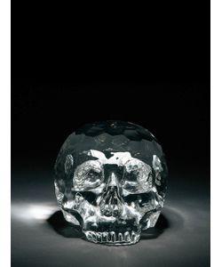 SELETTI | Crystal Skull