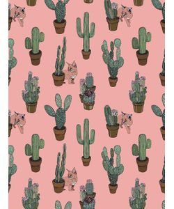 SILKEN FAVOURS | Peach Cactus Kitty Wallpaper