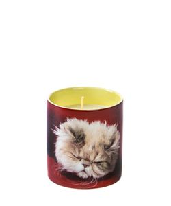 SELETTI WEARS TOILET PAPER | Ароматизированная Свеча Cat