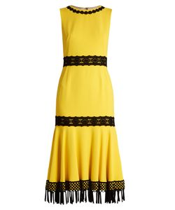 Dolce & Gabbana   Crochet-Trimmed Stretch-Cady Dress