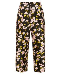 Marni | Sistowbell Print Cotton-Blend Trousers